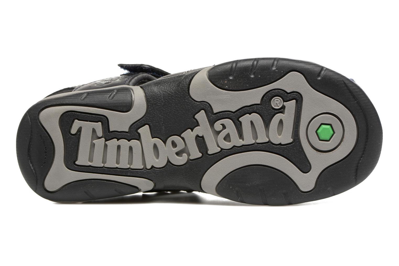Sandales et nu-pieds Timberland Oak Bluffs Leather Fisher Bleu vue haut