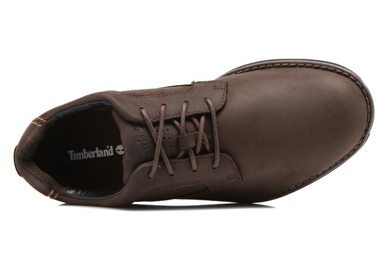 Zapatos con cordones Timberland Barrett PT Oxford Marrón vista lateral izquierda