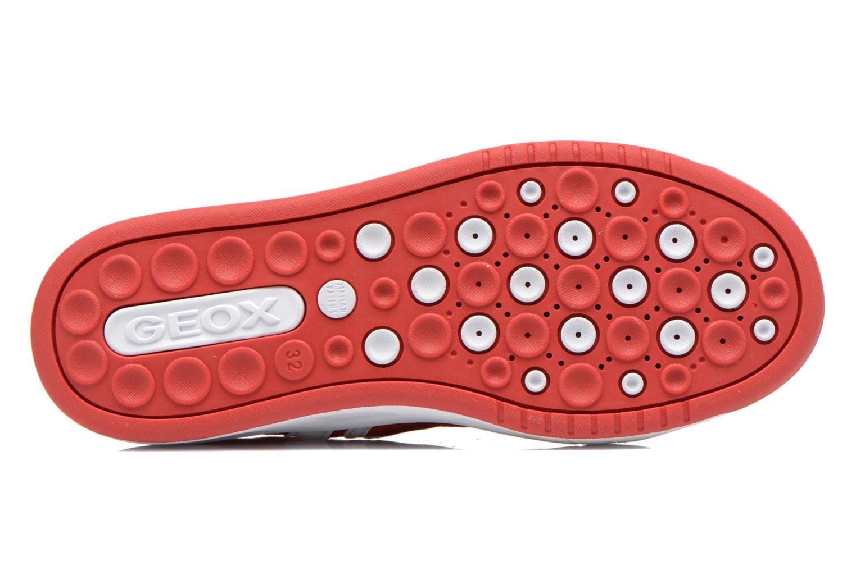 Sneakers Geox J Rolk B. E J620SE Rosso immagine dall'alto
