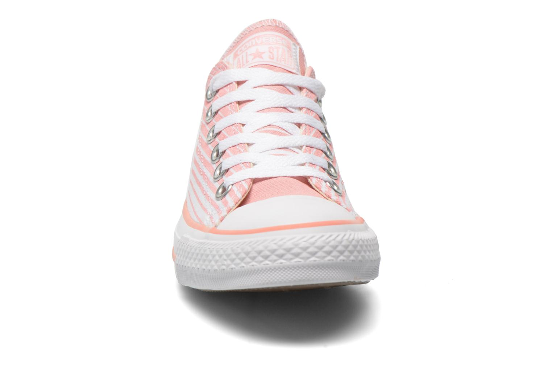 Sneaker Converse Chuck Taylor All Star Ox Seasonal Stripes W rosa schuhe getragen