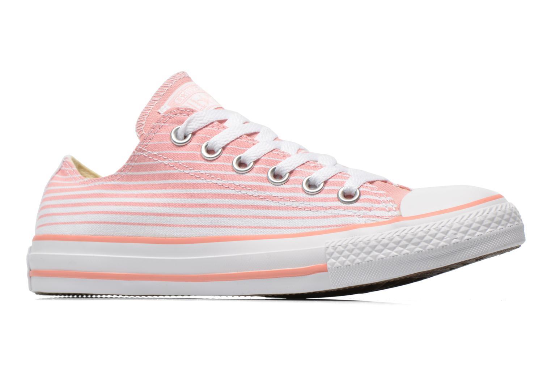 Sneaker Converse Chuck Taylor All Star Ox Seasonal Stripes W rosa ansicht von hinten