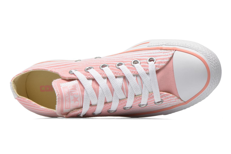 Sneaker Converse Chuck Taylor All Star Ox Seasonal Stripes W rosa ansicht von links