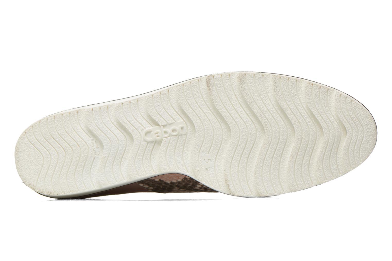 Chaussures à lacets Gabor Agathe Multicolore vue haut
