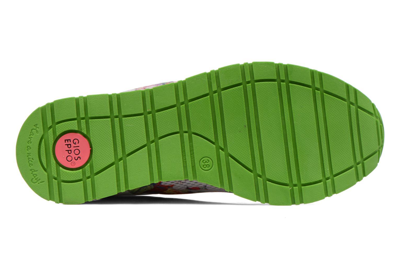Modica coral verde