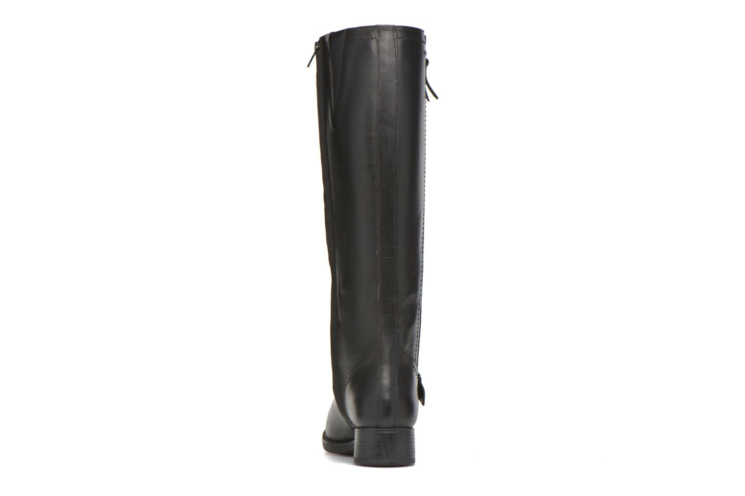 Boots & wellies Geox D FELICITY ABX B D64X9B Black view from the right