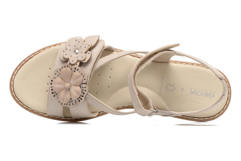 Sandali e scarpe aperte Geox JR Sandal Milk J52D1F Beige immagine sinistra
