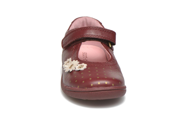 Ballerines Start Rite Daisy Bordeaux vue portées chaussures