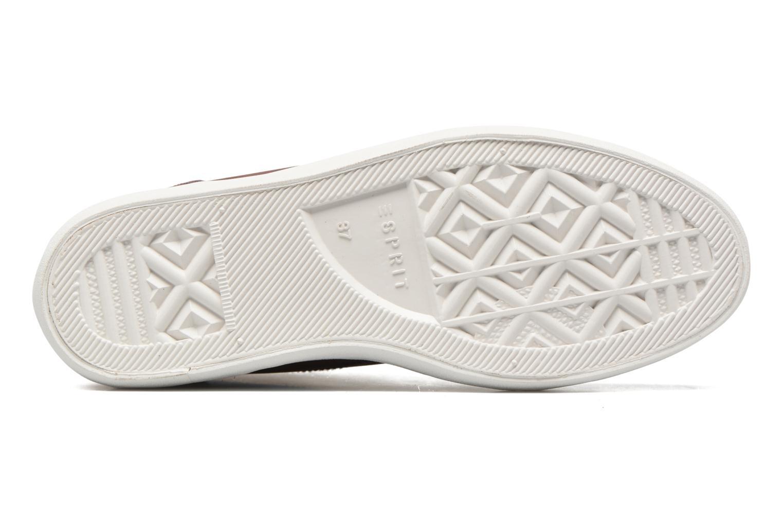 Sneaker Esprit Star Wedge 2 weinrot ansicht von oben