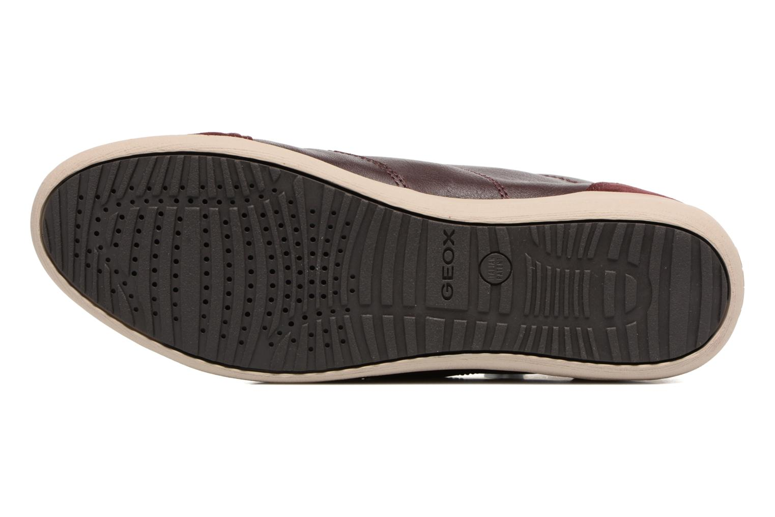 Trainers Geox D MYRIA C D6468C Burgundy view from above