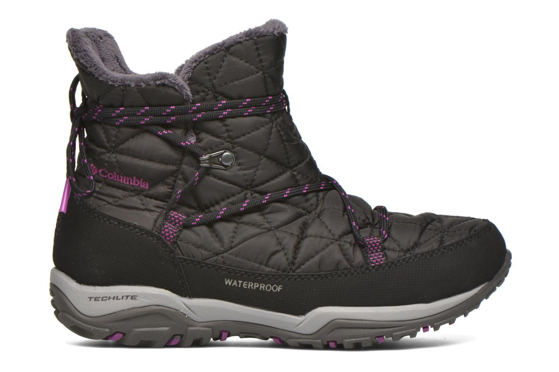 Chaussures de sport Columbia Loveland Shorty Omni-Heat Noir vue derrière