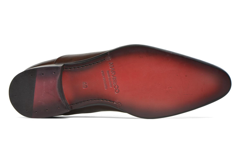 Scarpe con lacci Marvin&Co Norwood Marrone immagine dall'alto