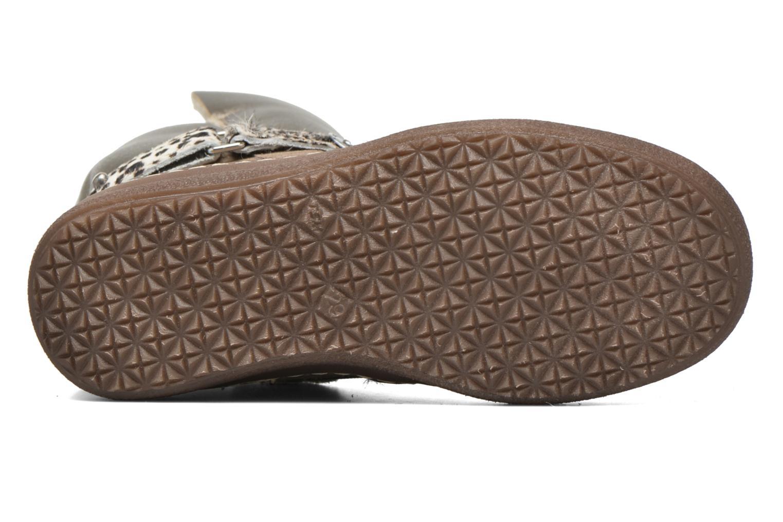 Støvler & gummistøvler Catimini Calandre Brun se foroven