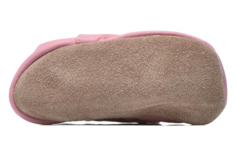 Pantoffels Inch Blue Little Cupcake Roze boven
