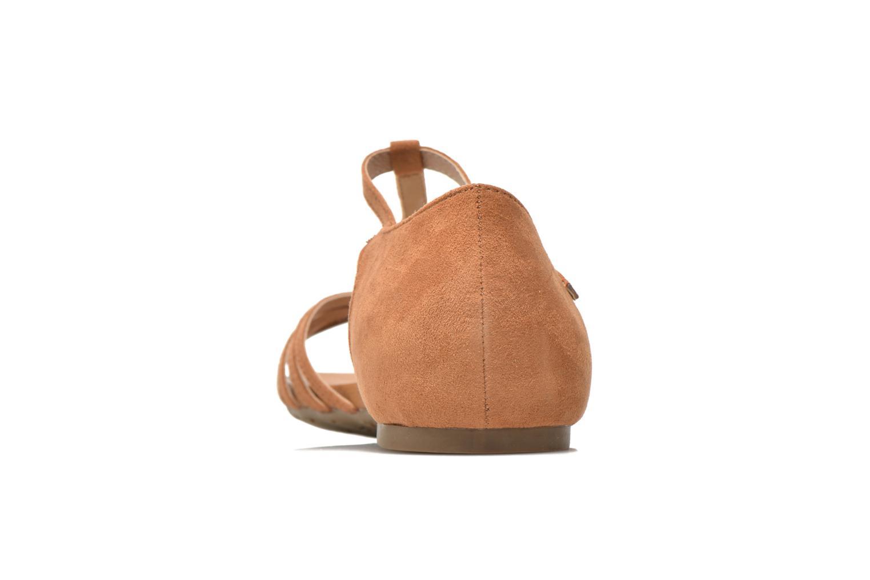 Noisettina-61786 Camel