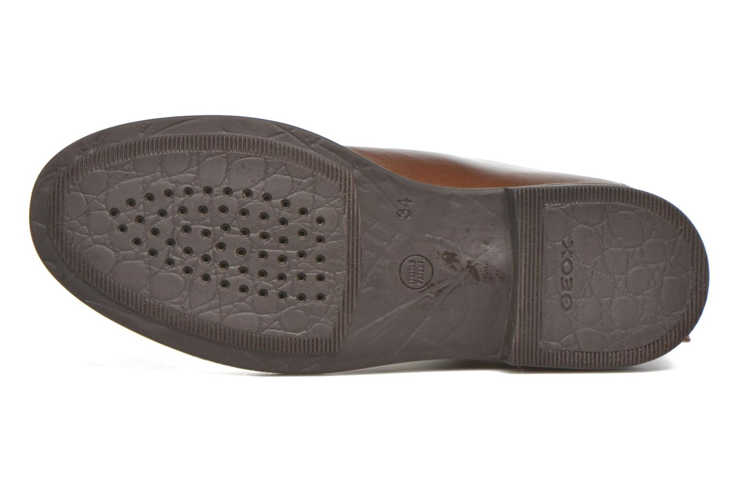 Ankle boots Geox J Agata C J5449C Brown view from above