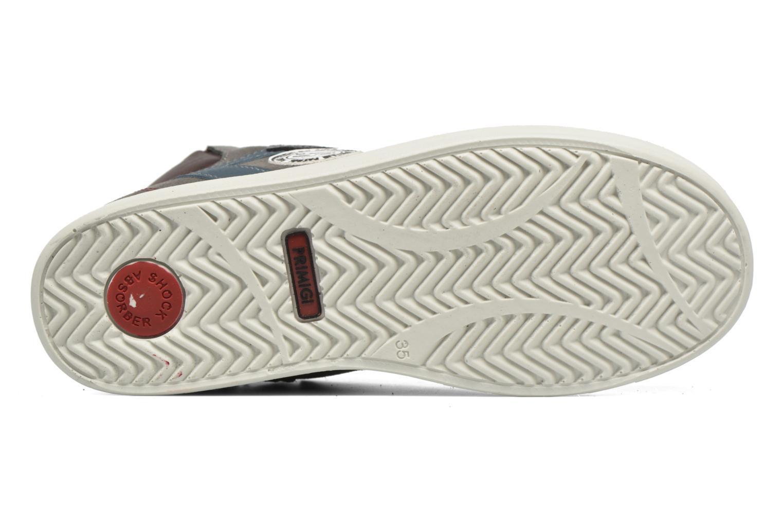 Sneaker Primigi Oliviero grau ansicht von oben