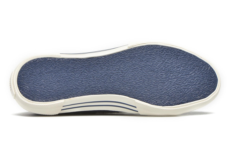 Sneaker Pepe jeans Aberlady Crackle blau ansicht von oben