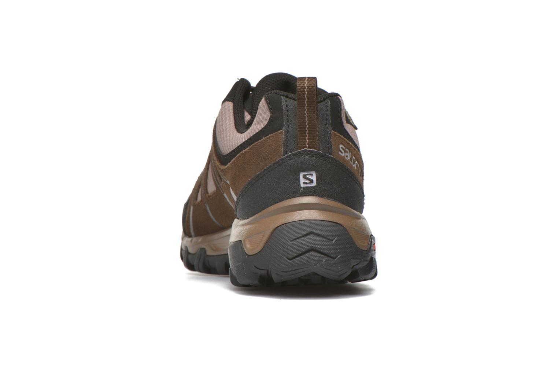 Chaussures de sport Salomon Evasion GTX Marron vue droite