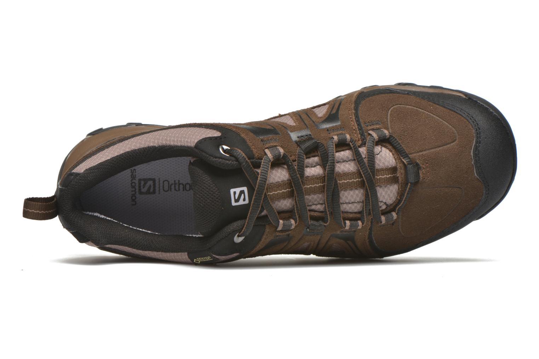 Chaussures de sport Salomon Evasion GTX Marron vue gauche