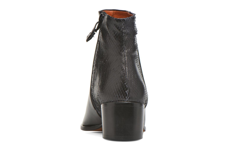 Stiefeletten & Boots Elizabeth Stuart Havys 115 schwarz ansicht von rechts