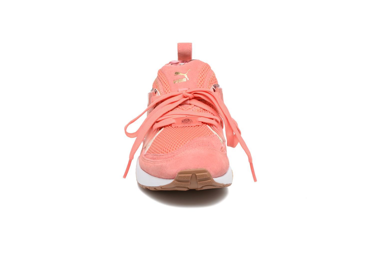 Baskets Puma Trinomic Blaze Of Glory X Careaux Rose vue portées chaussures