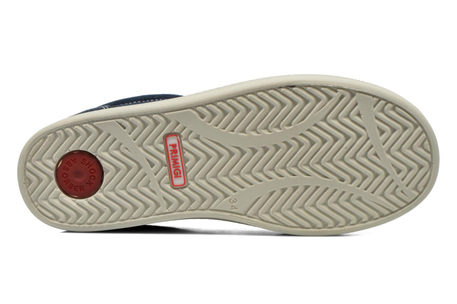 Trainers Primigi Alienor Blue view from above