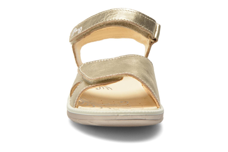 Sandals Primigi Alanis Bronze and Gold model view