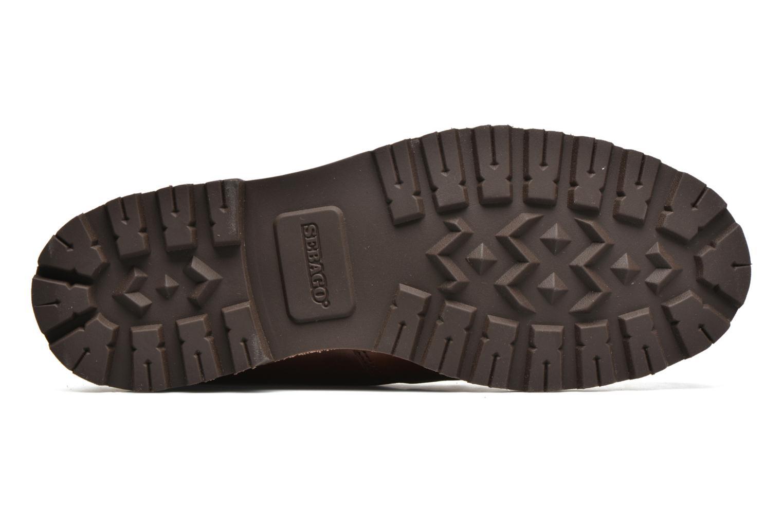 Stiefeletten & Boots Sebago Vershire Chukka braun ansicht von oben