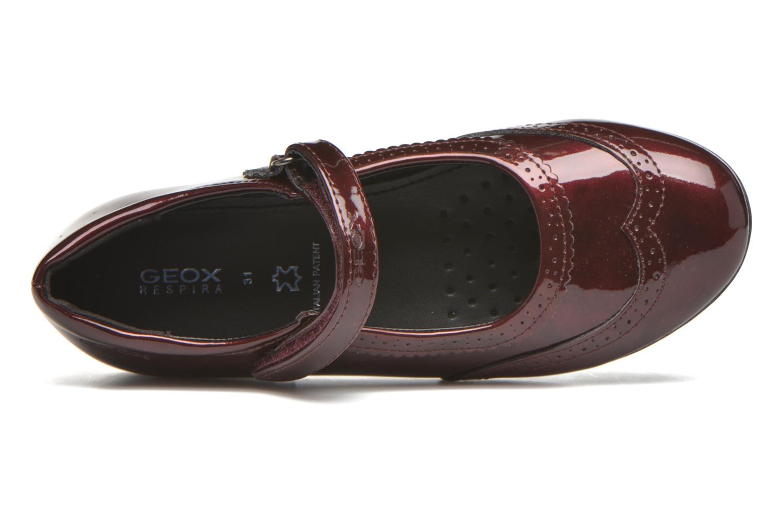 JR Plie' J5455F Bordeaux