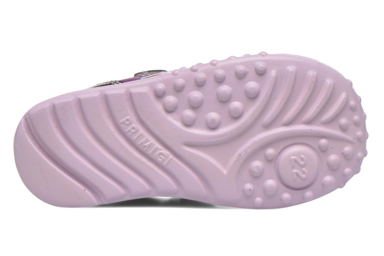 Chaussures à scratch Primigi Morgana 2 Violet vue haut