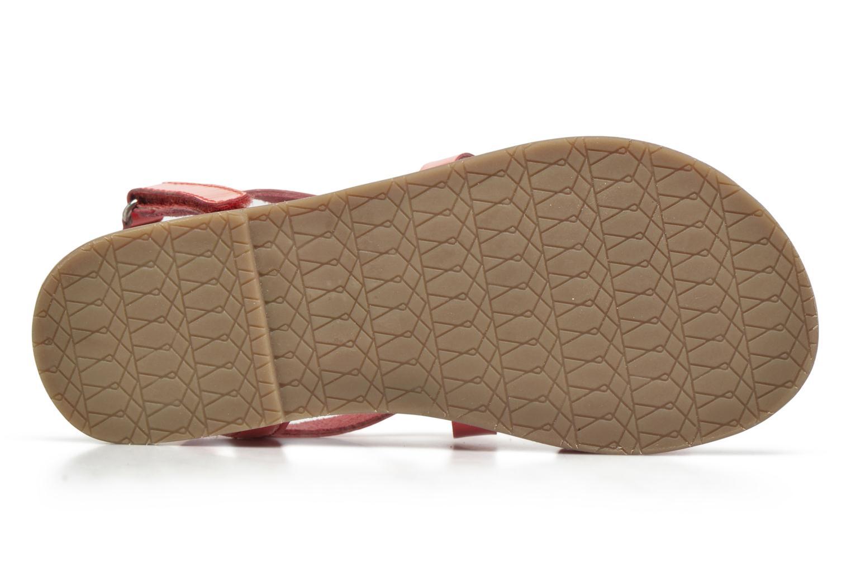 Sandali e scarpe aperte I Love Shoes KEINU Leather Rosa immagine dall'alto