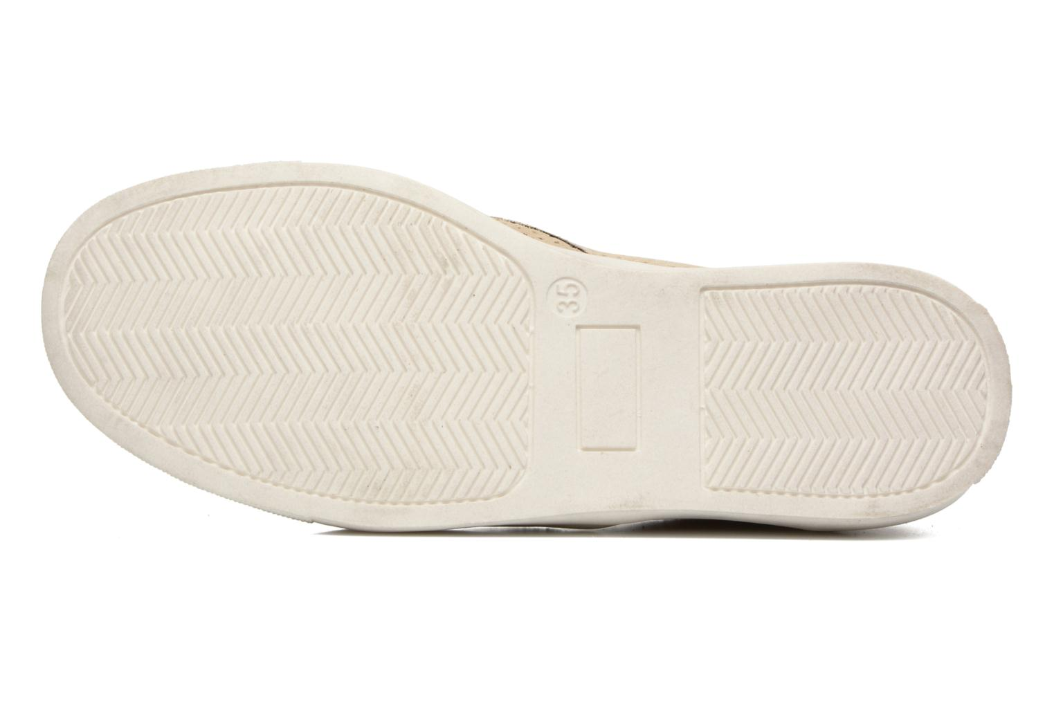 Trainers ASSO Llore Beige view from above