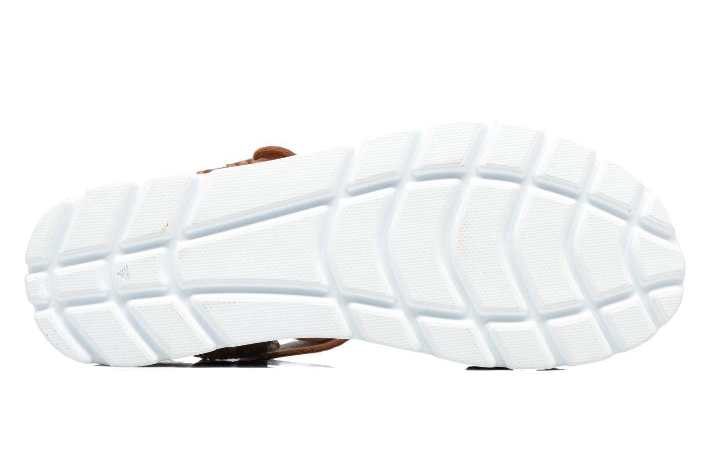 Sandales et nu-pieds Panama Jack Sally snake Marron vue haut