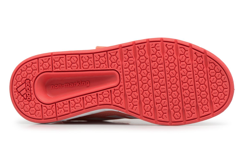 Sneakers Adidas Performance Altasport Cf K Orange se foroven