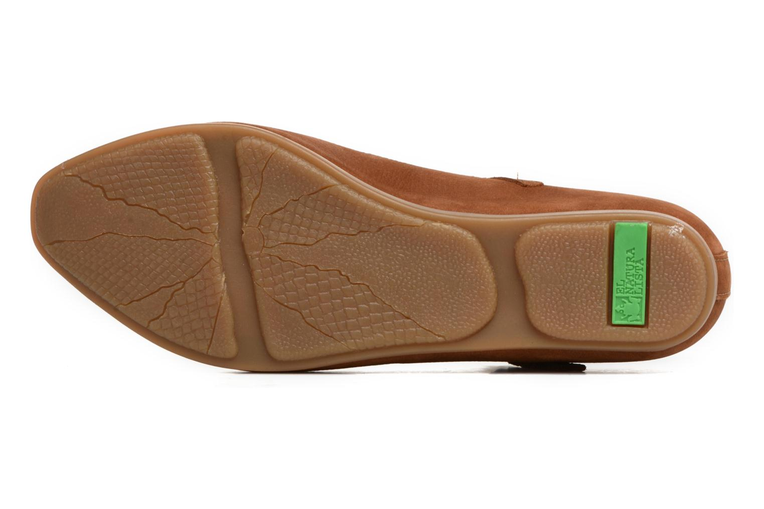 Ballet pumps El Naturalista Stella ND58 Brown view from above