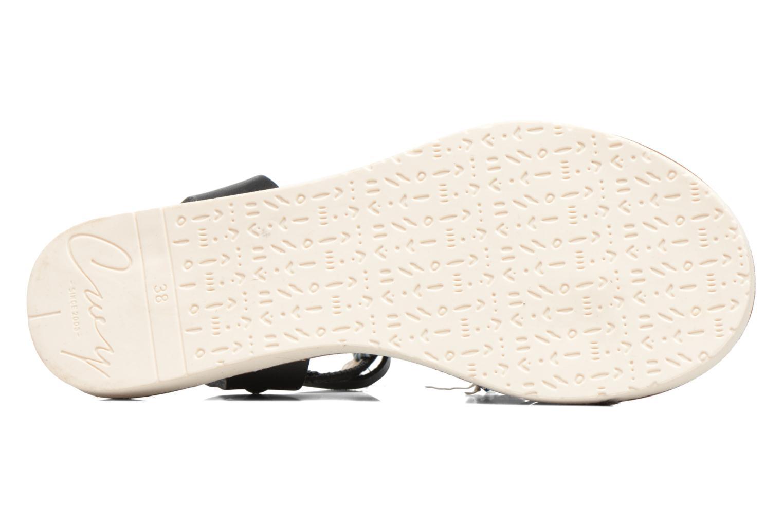 Sandales et nu-pieds Coolway Honololu Noir vue haut
