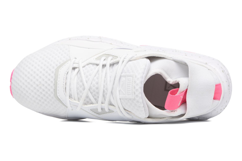 BOG Sock Core White-Knockout Pink