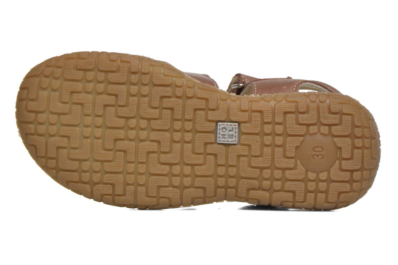 Sandales et nu-pieds Noël Tyler Marron vue haut
