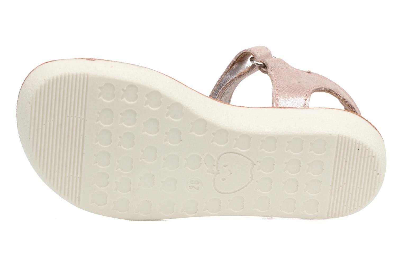 Sandales et nu-pieds Shoo Pom Goa Scratch Piping Rose vue haut