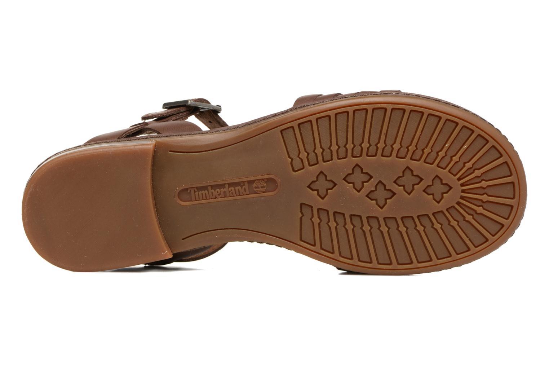 Sandales et nu-pieds Timberland Cherrybrook Ankle Strap Marron vue haut