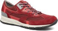 DK RED/WINE