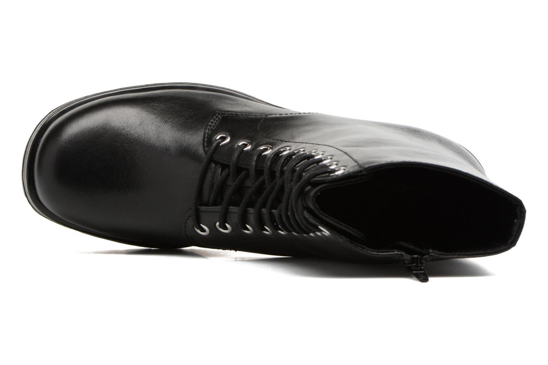 Dioon 4447-001 Black