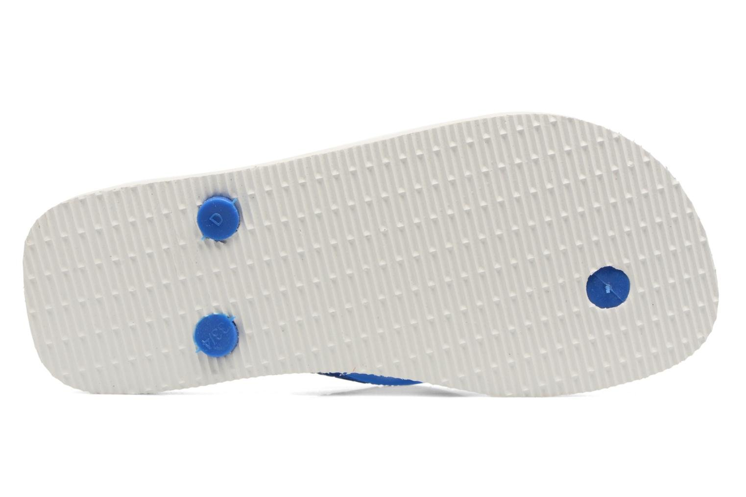 Flip flops Havaianas Top Marvel Blue view from above