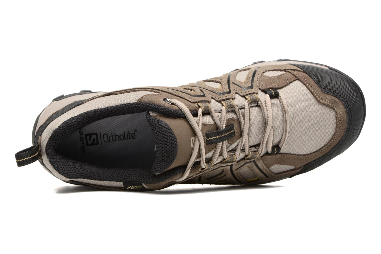Chaussures de sport Salomon Evasion 2 Gtx Gris vue gauche