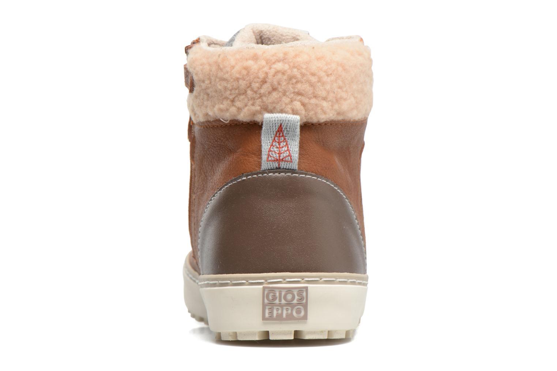Bottines et boots Gioseppo 41759 Marron vue droite