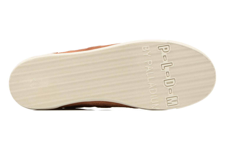 Sneakers P-L-D-M By Palladium Borova Sud Bruin boven