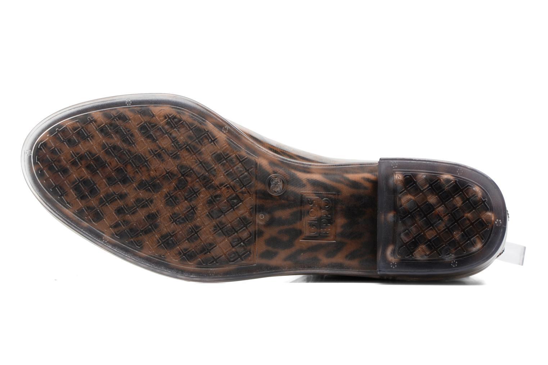 Bradford Leopardo