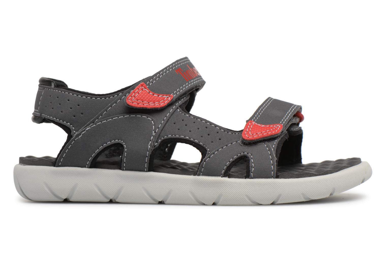 Sandales et nu-pieds Timberland Perkins Row 2-Strap Gris vue derrière
