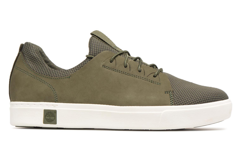 Sneaker Timberland Amherst Lthr LTT Sneaker grün ansicht von hinten