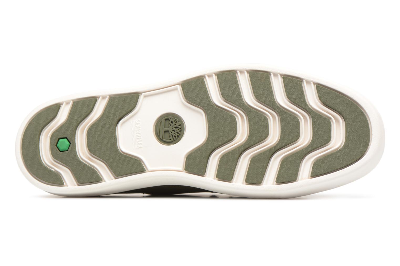 Sneaker Timberland Amherst Lthr LTT Sneaker grün ansicht von oben